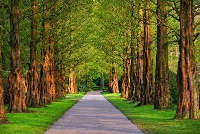 Walking the Spiritual Path Day 3