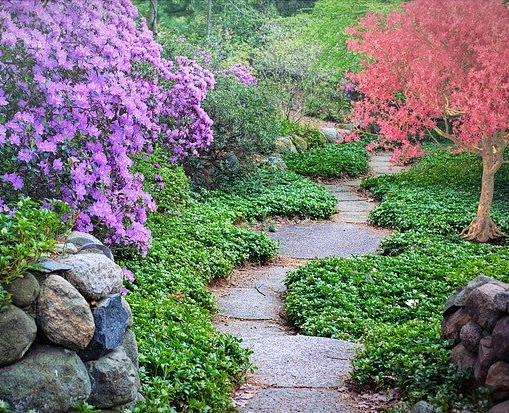 Walking the Spiritual Path Introduction
